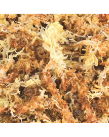 TRIXIE Tőzegmoha aljzat (sphagnum) 100 g