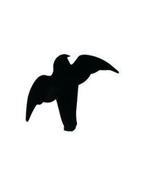 TRIXIE Matrica készlet ragadozó madarak 3 db