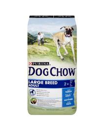PURINA Dog Chow Adult Large Breed pulyka 14 kg