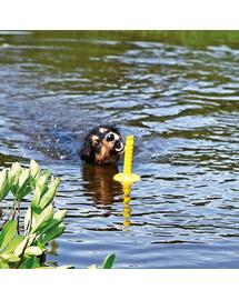TRIXIE Játék kutyáknak vízi játékhoz Mot Aqua