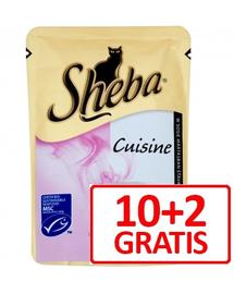 SHEBA Cuisine lazaccal mártásban 10 x 85 g + 2 ajándék!
