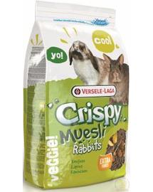 VERSELE-LAGA Crispy Muesli - Rabbits 20kg - Keverék miniatűr nyulaknak