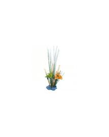 ZOLUX Növényi kompozíció, közepes