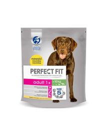PERFECT FIT Adult 1+ csirkében gazdag eledel közepes- és nagyméretű kutyáknak 5 x 825 g