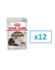 ROYAL CANIN Ageing +12 aszpikban 12x85g