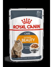 ROYAL CANIN INTENSE BEAUTY CARE - szószos nedves táp felnőtt macskák részére a szebb szőrzetért és az egészséges bőrért 85g x 12