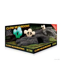 EXOTERRA Rejtekhely világító gombák