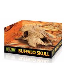 EXOTERRA Rejtekhely bivaly koponyája