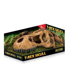 EXOTERRA Rejtekhely egy tyrannosaurus koponyája