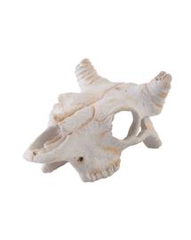 EXOTERRA Rejtekhely bivaly koponyája, kicsi