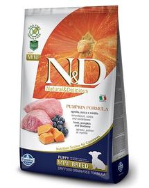 N&D GF Pumpkin Lamb & Blueberry Puppy Mini 800 g