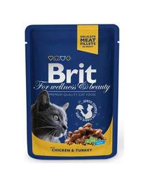 BRIT Premium Cat Adult kurczak i indyk saszetka 100g