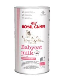 ROYAL CANIN BABYCAT MILK - tejpótló tápszer kölyökmacska részére 0,3 kg