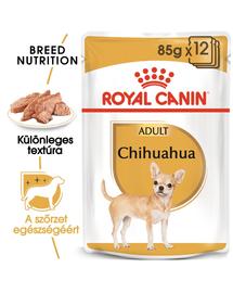 ROYAL CANIN CHIHUAHUA ADULT - Csivava felnőtt kutya nedves táp 85g x 12