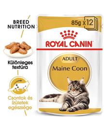 ROYAL CANIN MAINE COON ADULT - Maine Coon felnőtt macska nedves táp 85g x 12
