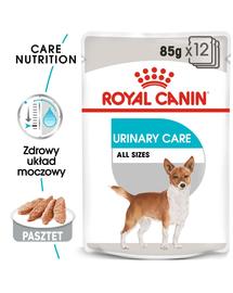 ROYAL CANIN URINARY CARE - nedves táp felnőtt kutyák részére az alsó hugyúti problémák megelőzéséért 12 x 85g